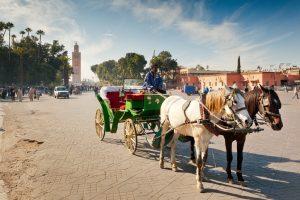 Calèche Marrakech