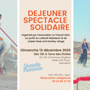 spectacle solidaire