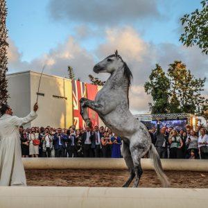 Anniversaire de sa Majesté la Reine Elisabeth II Ambassade du Royaume-Uni à Rabat